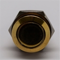 16mm Anti Vandal Momentary Polished Brass Switch