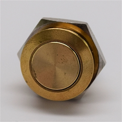 16mm Anti Vandal Momentary Natural Brass Switch